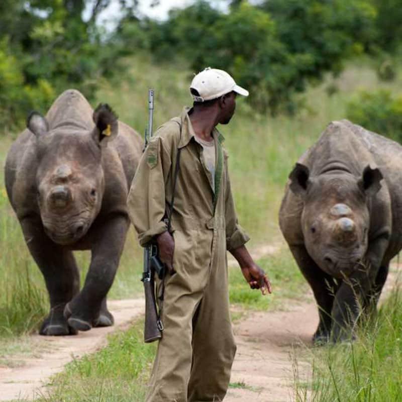 Imire Rhino Handler