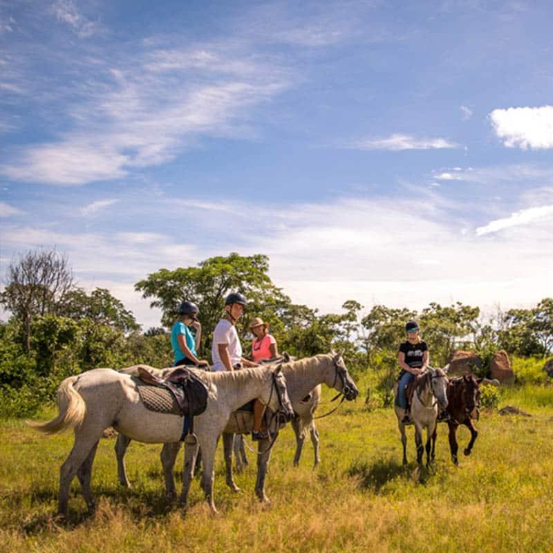 Imire Activites Horseback Safari