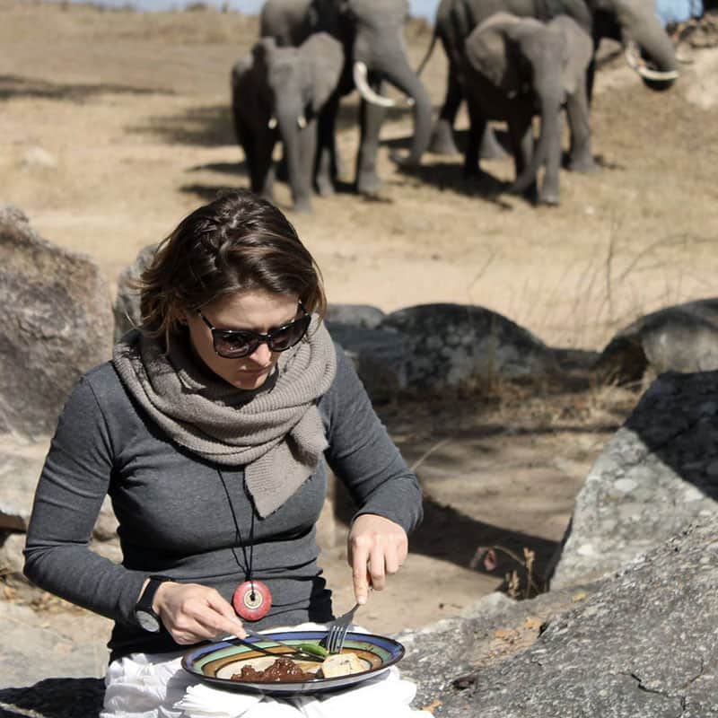Imire Day Trips Lunch Elephant