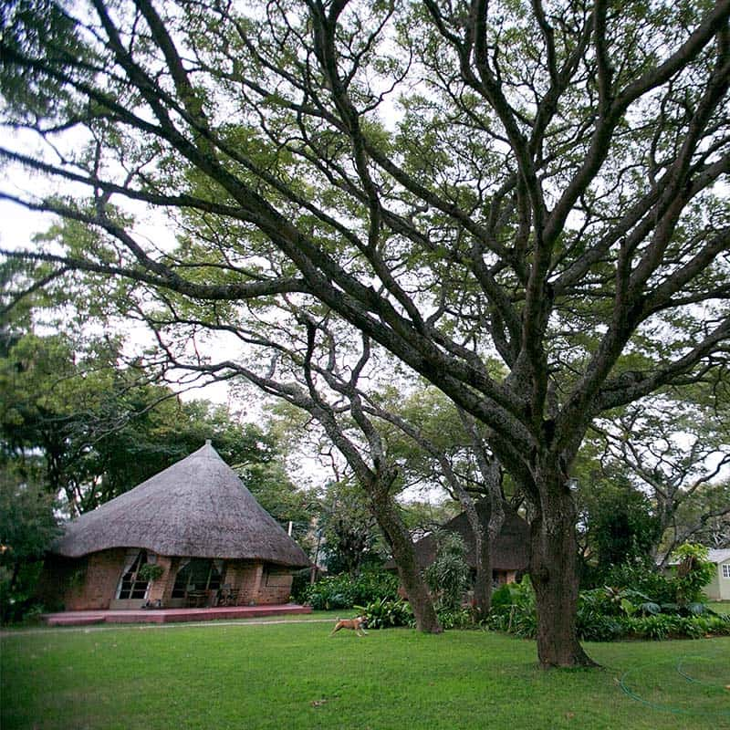 Imire Lodge Garden