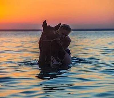 MOZ HORSE INTERNSHIP