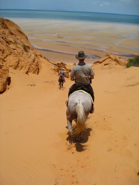 MOZ HORSE INTERNSHIP 8