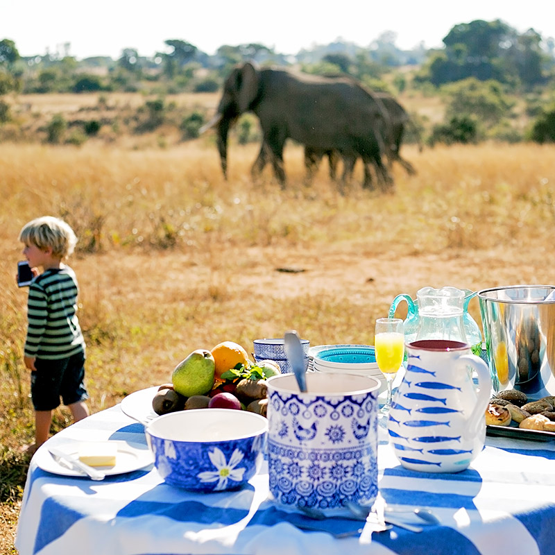 BREKKIE WITH THE IMIRE ELEPHANT