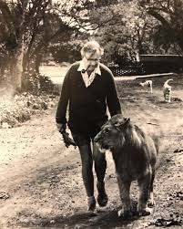 Norman Travers and Cassius lion