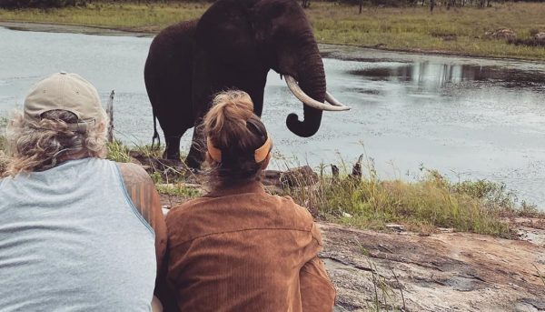girl and man with elephant