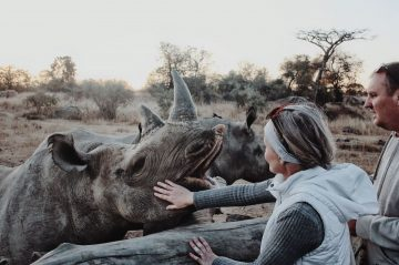 self-catering at Imire - rhino feeding