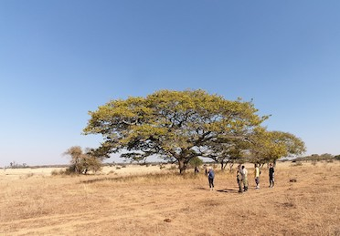 Volunteers studying wildlife